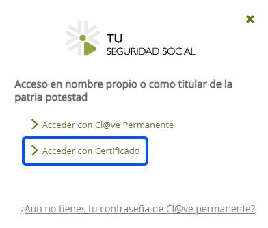 Acceso con Certificado Digital SS